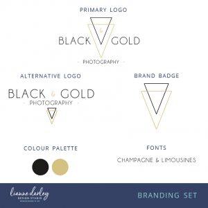 Contemporary Black and Gold Logo