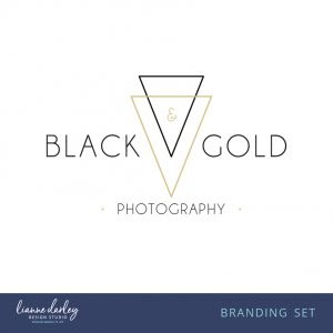 Contemporary Black and Gold Logo